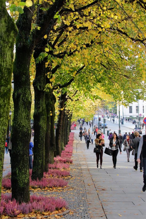 Walk in Oslo, Norway